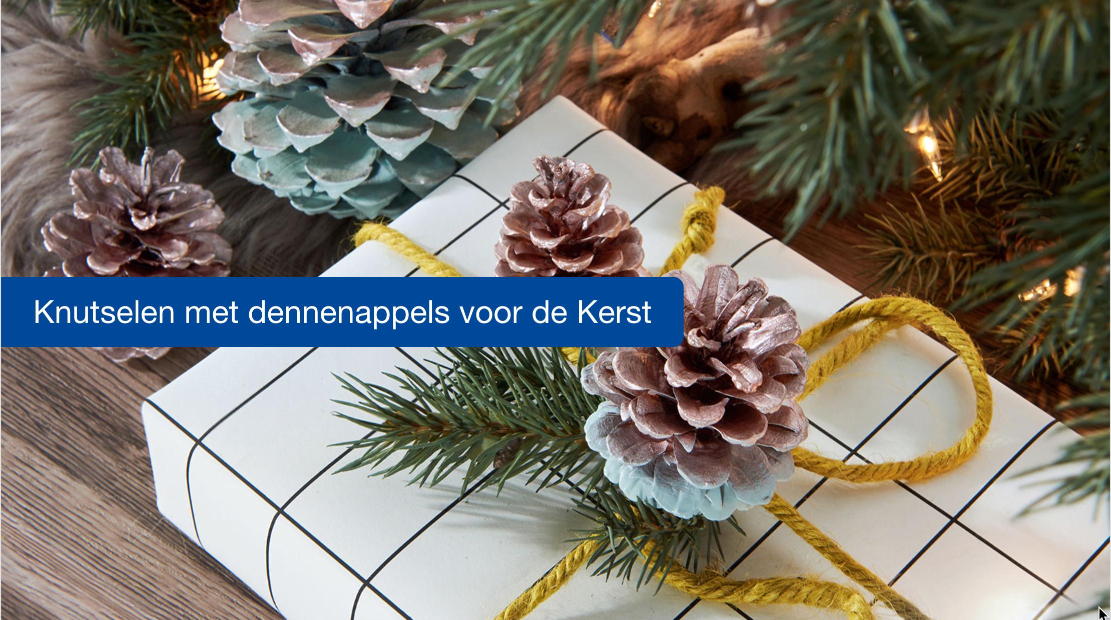 Genoeg Versier dennenappels als kerst decoratie #EP55